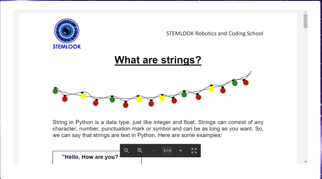 STEMLOOK Python Coders Theory Explained